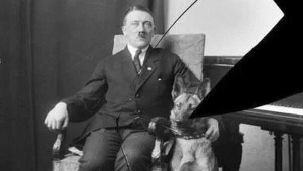 Vůdce Třetí říše Adolf Hitler - Sputnik Česká republika