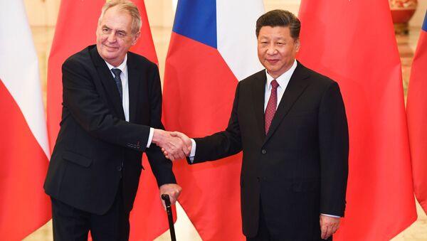 Český prezident Miloš Zeman a čínský prezident Si Ťin-pching během jednání v Pekingu - Sputnik Česká republika