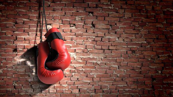 Boxerské rukavice. Ilustrační foto - Sputnik Česká republika