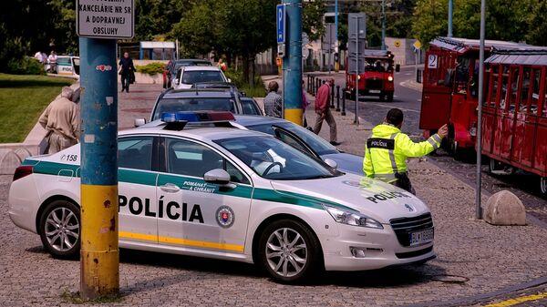Policejní auto na ulici Brastislavy. Archivní fotografie - Sputnik Česká republika